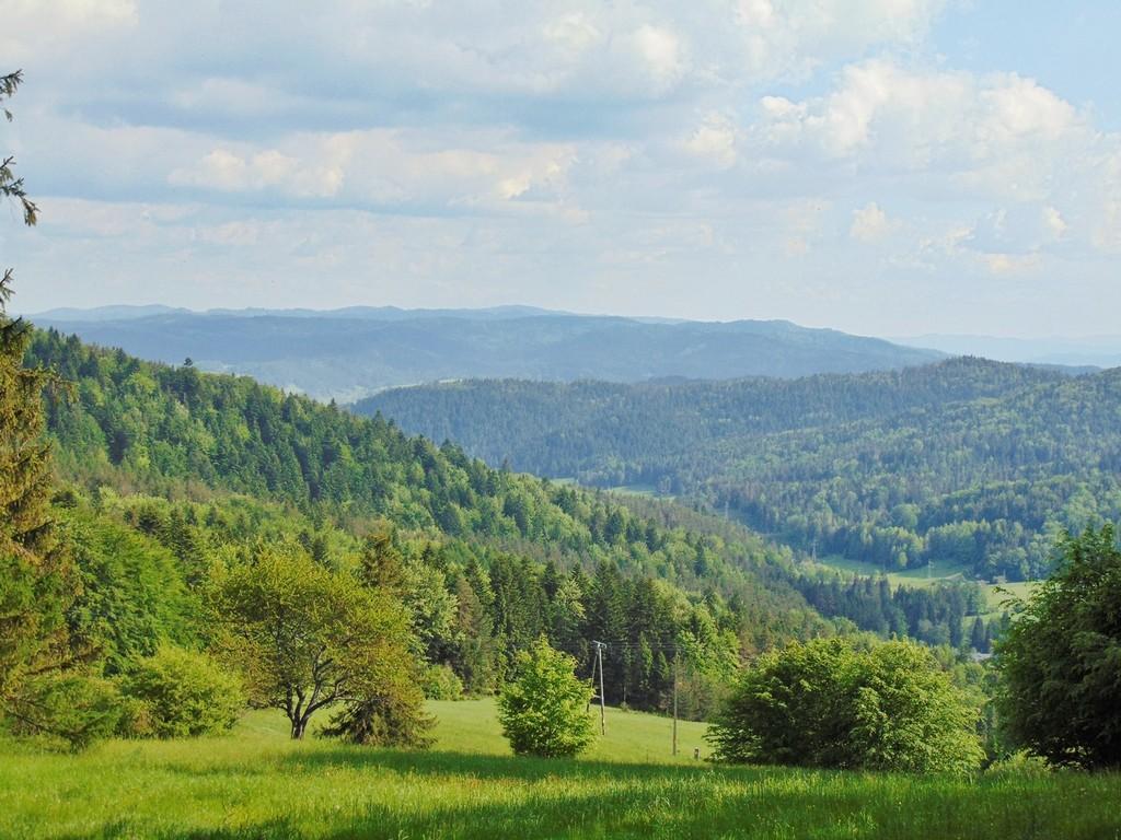 polski krajobraz