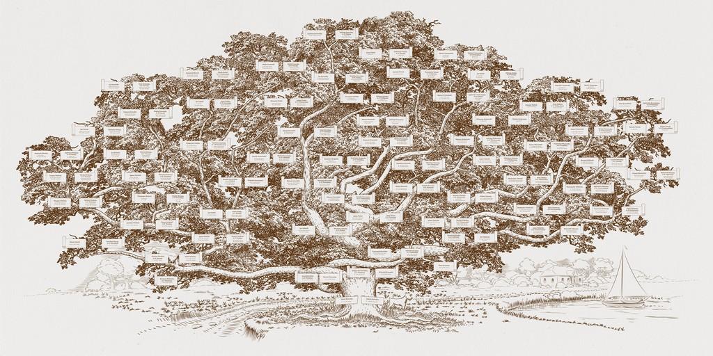 genealogia, drzewo genealogiczne