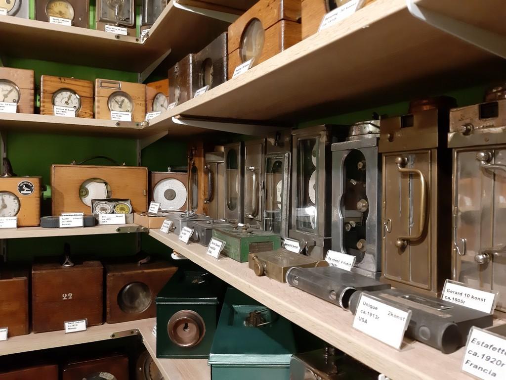 zegary gołębi kolekcja